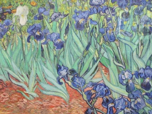 Van Gogh @ Getty