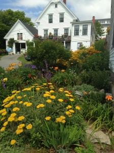 Wildflower Garden Rockland