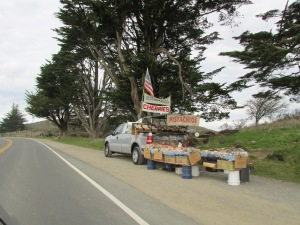 California, home of fruits and nuts (smile)
