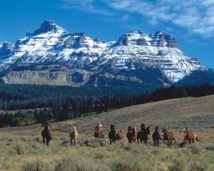 Horse drive below Ramshorn Peak, Absaroka Range, near Dubois, Wyoming.