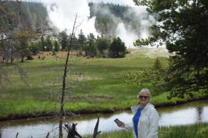 The Grand Geyser erupting in the distance.  Our friend Tee-gie in the foreground.