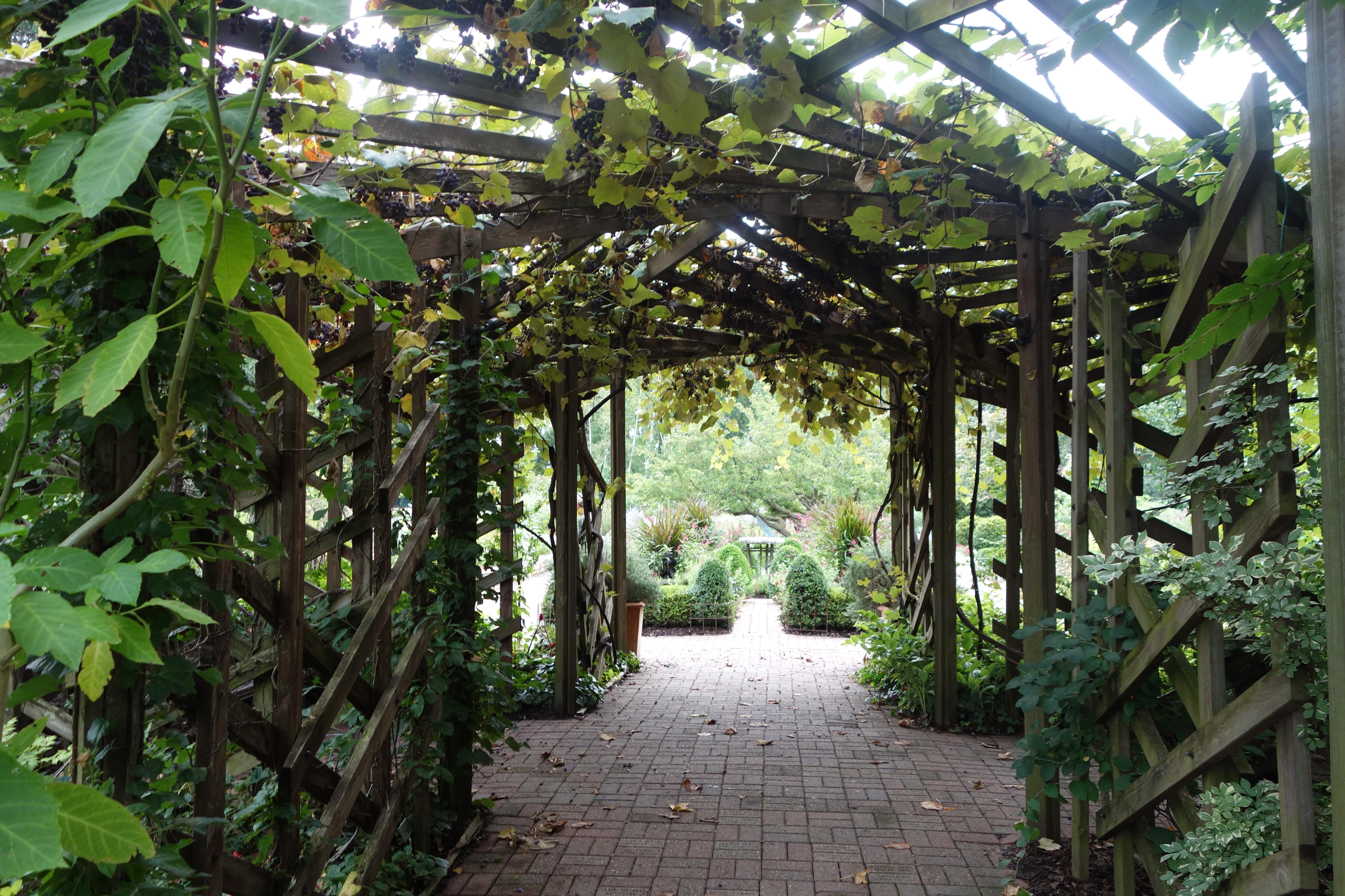 madison wisconsin olbrich botanical gardens living in a minivan