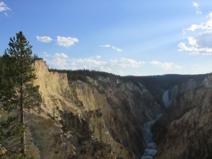 Yellowstone falls, river and canyon